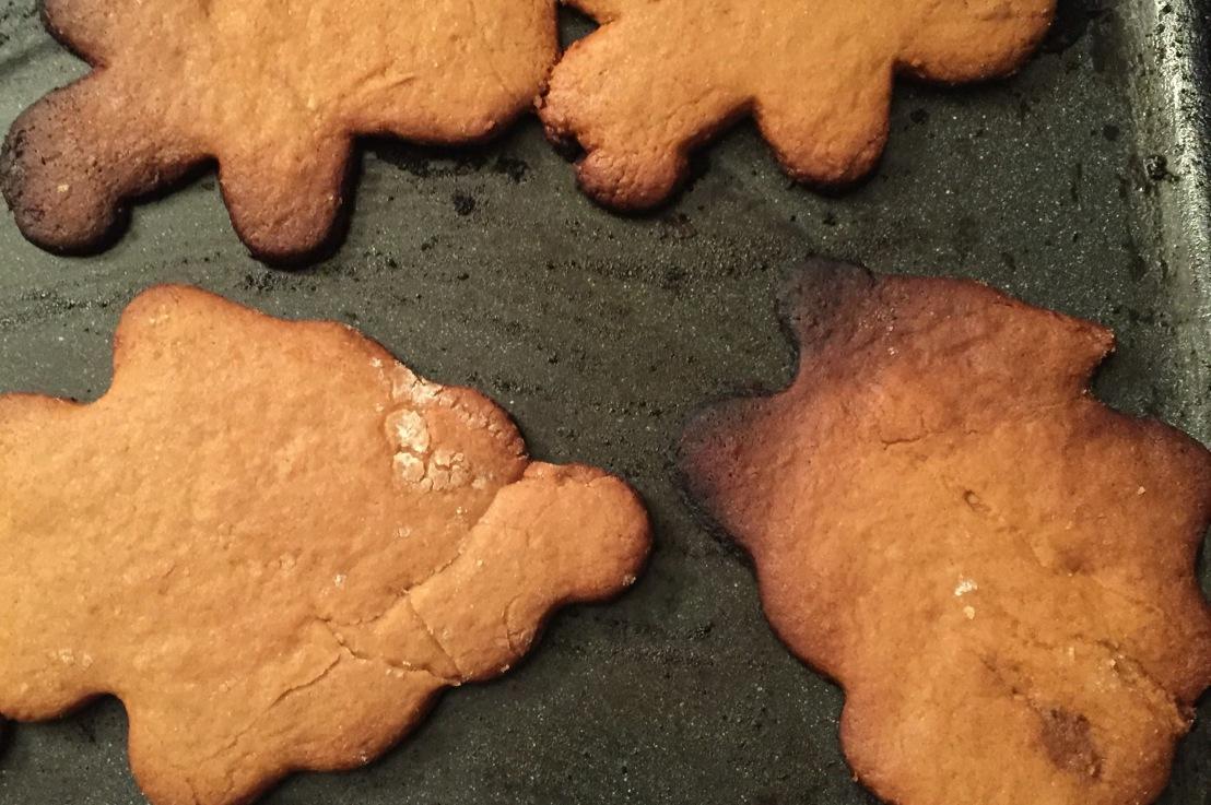 Burnt cookies, areintroduction