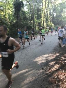 Runners start the Nags Head Woods 5K.