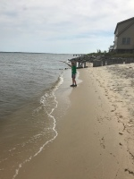 The shoreline of Manteo.