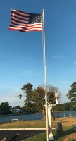 The American flag flies with cypress trees in the background.